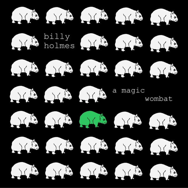 Billy Holmes - A Magic Wombat